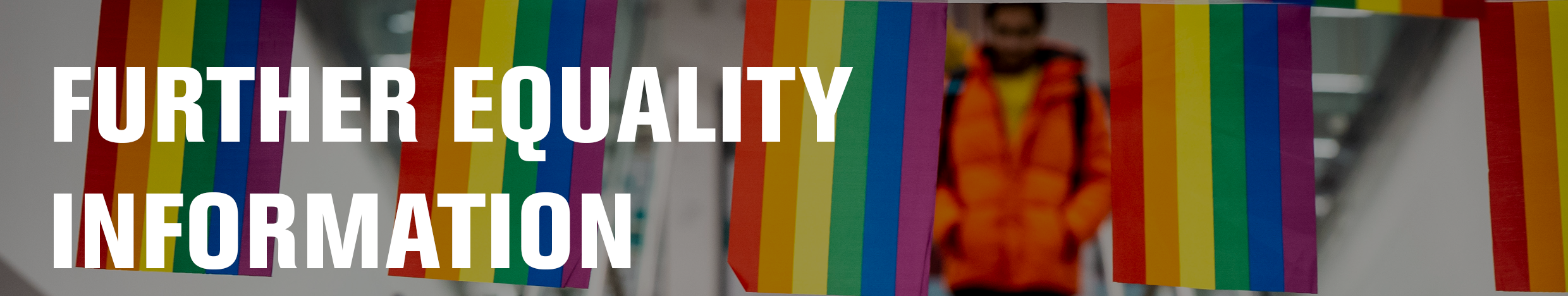 Equality and diversity at DMU